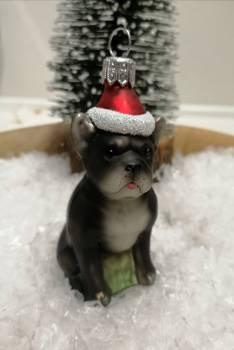 Bulldog med hue glas juletræskugle