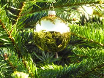 Højglans guld juletræs glaskugler Ø 6.7 cm