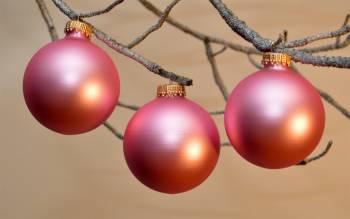 Silkematte sart rosa juletræskugler Ø 6.7 cm
